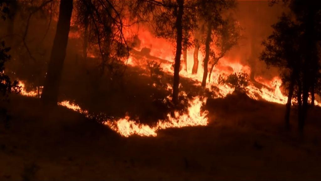 美國加州北部山火蔓延最少一死