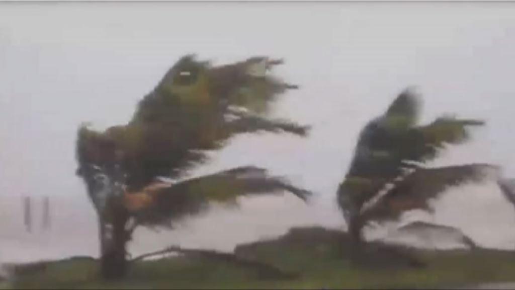 受颶風艾爾瑪影響 加勒比海島國出現狂風暴雨