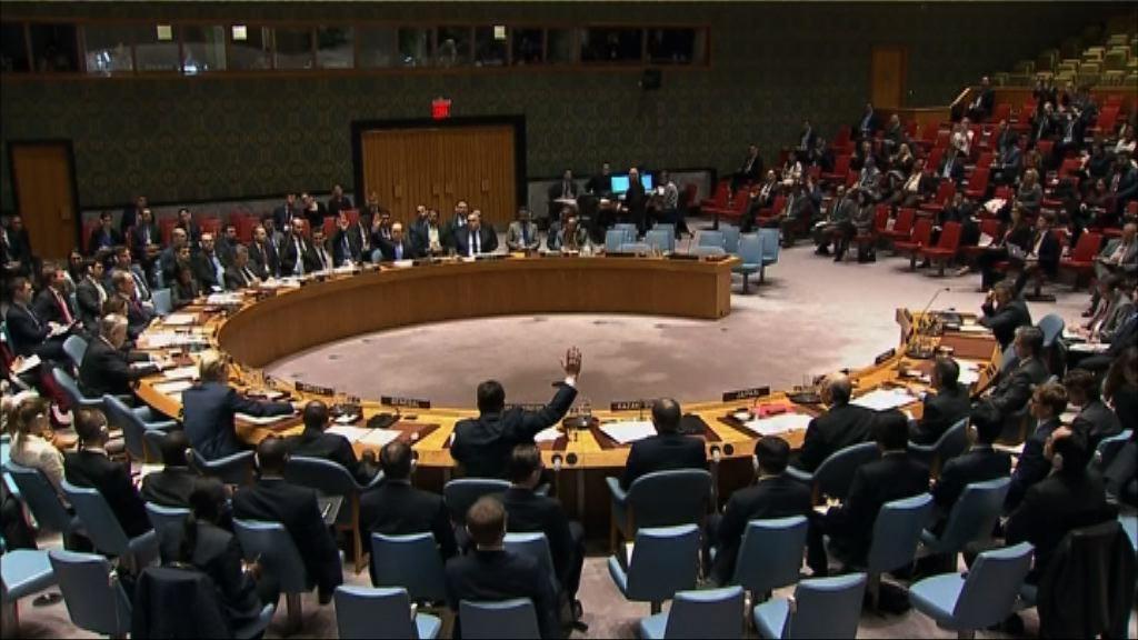 中俄否決制裁涉用化武敘國軍官