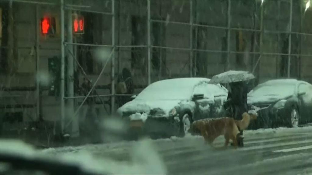 美東岸再遭暴風雪吹襲 紐約逾千班航班取消