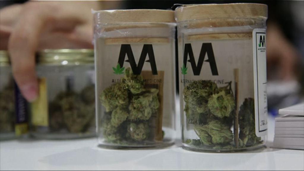 美國內華達州大麻合法化 銷情較預期高