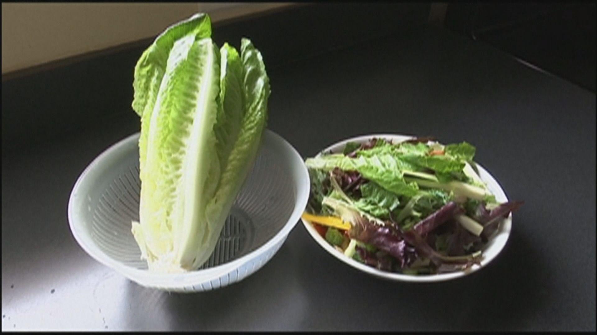 美加再爆大腸桿菌疫情 籲停食羅馬生菜