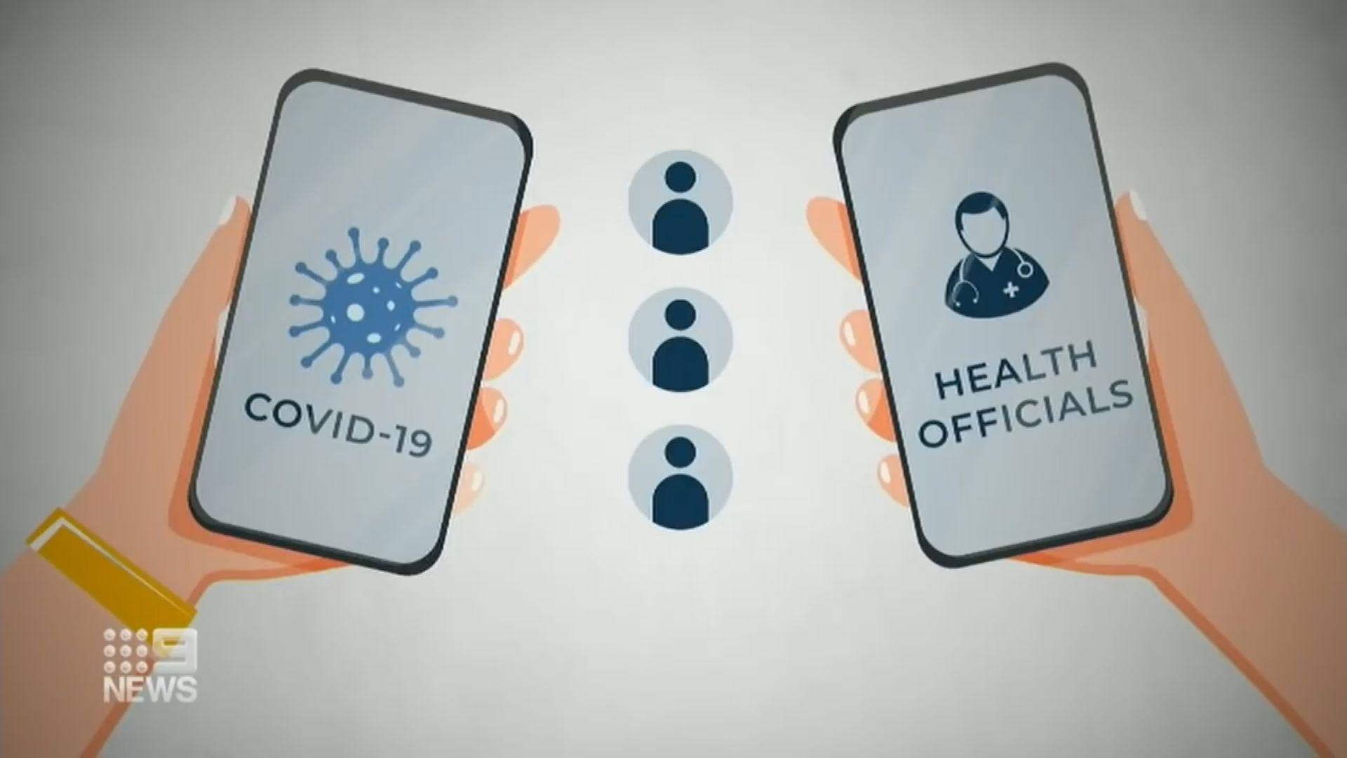 澳洲疫情稍緩 推出手機程式追蹤新冠病毒接觸者