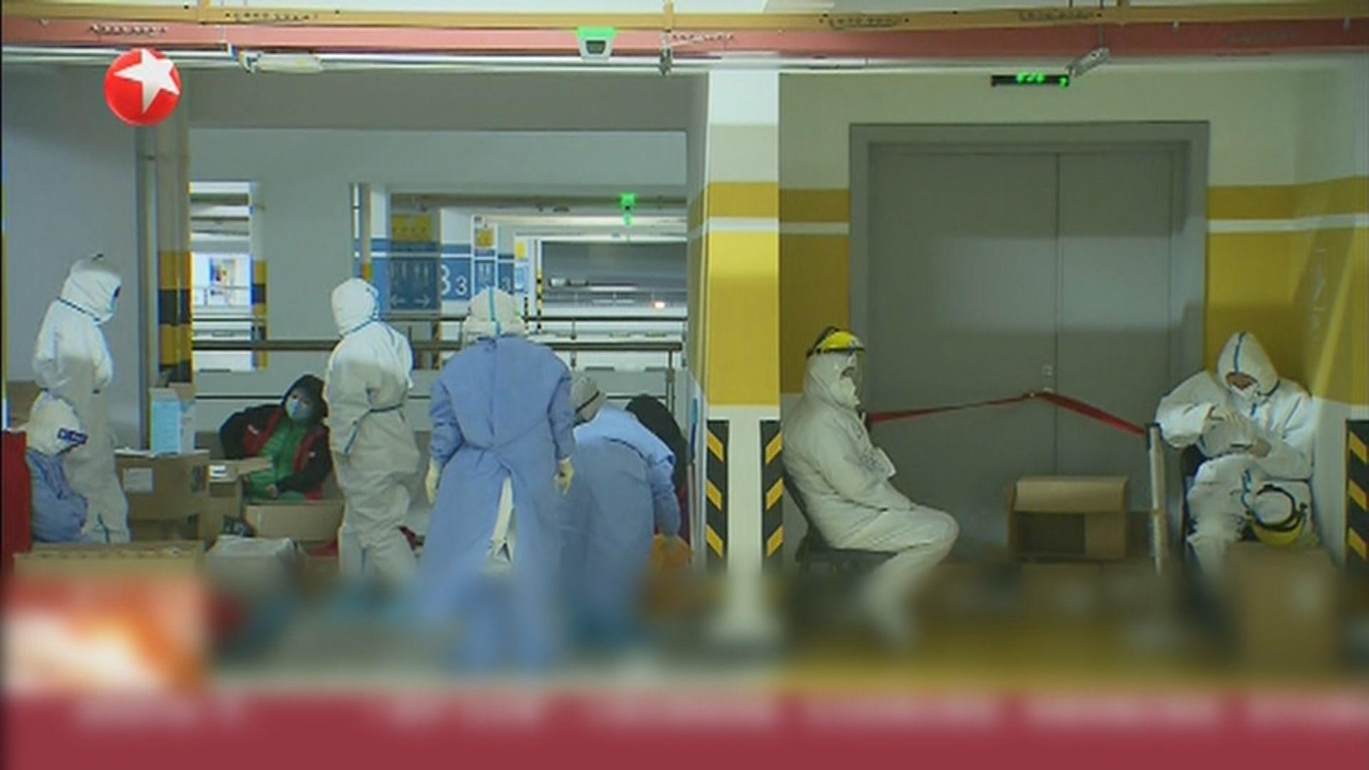 專家指上浦東機場首兩宗病例感染源頭來自北美航空貨櫃