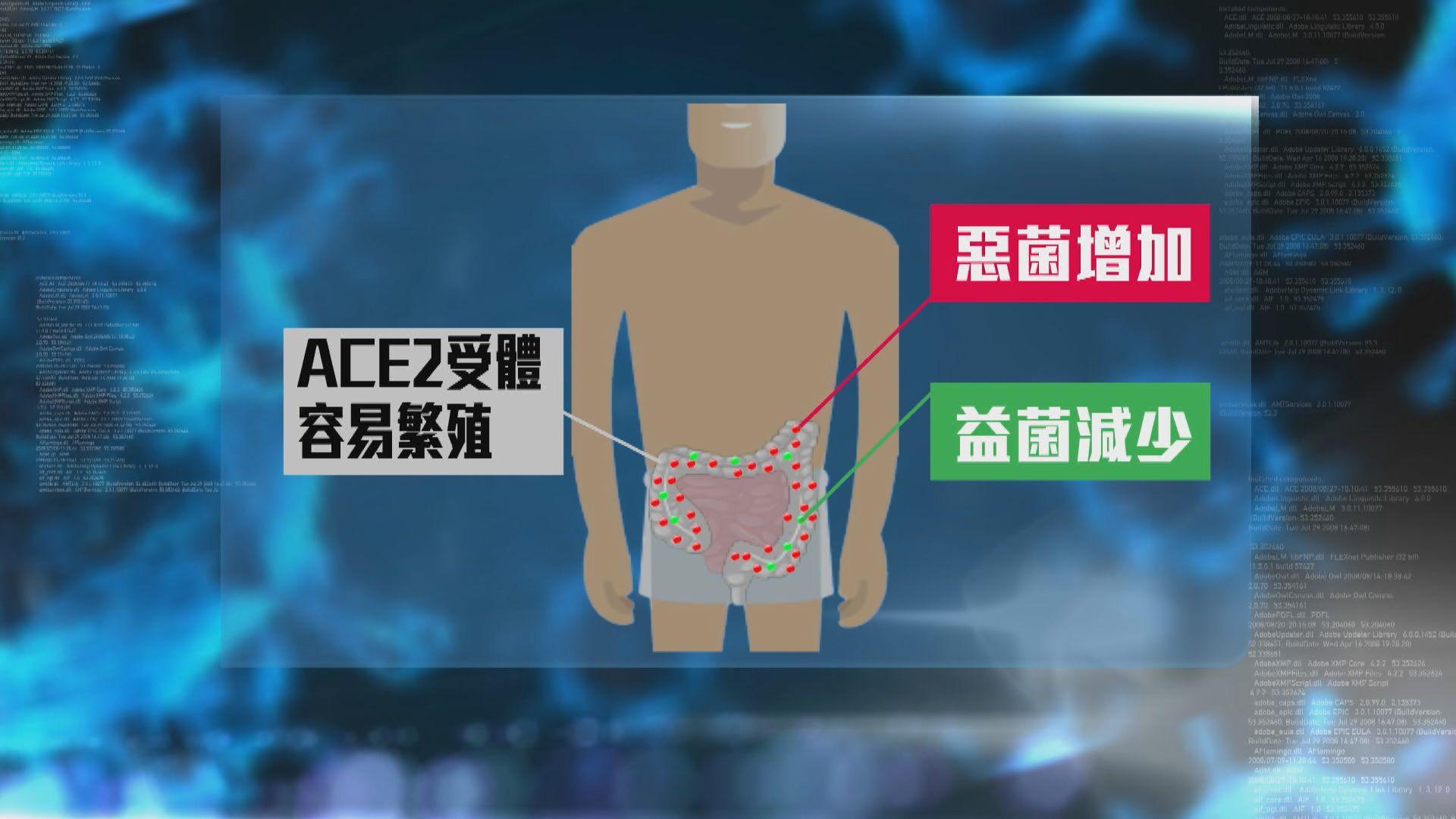 中大研發益生菌組合配方提升人體免疫力