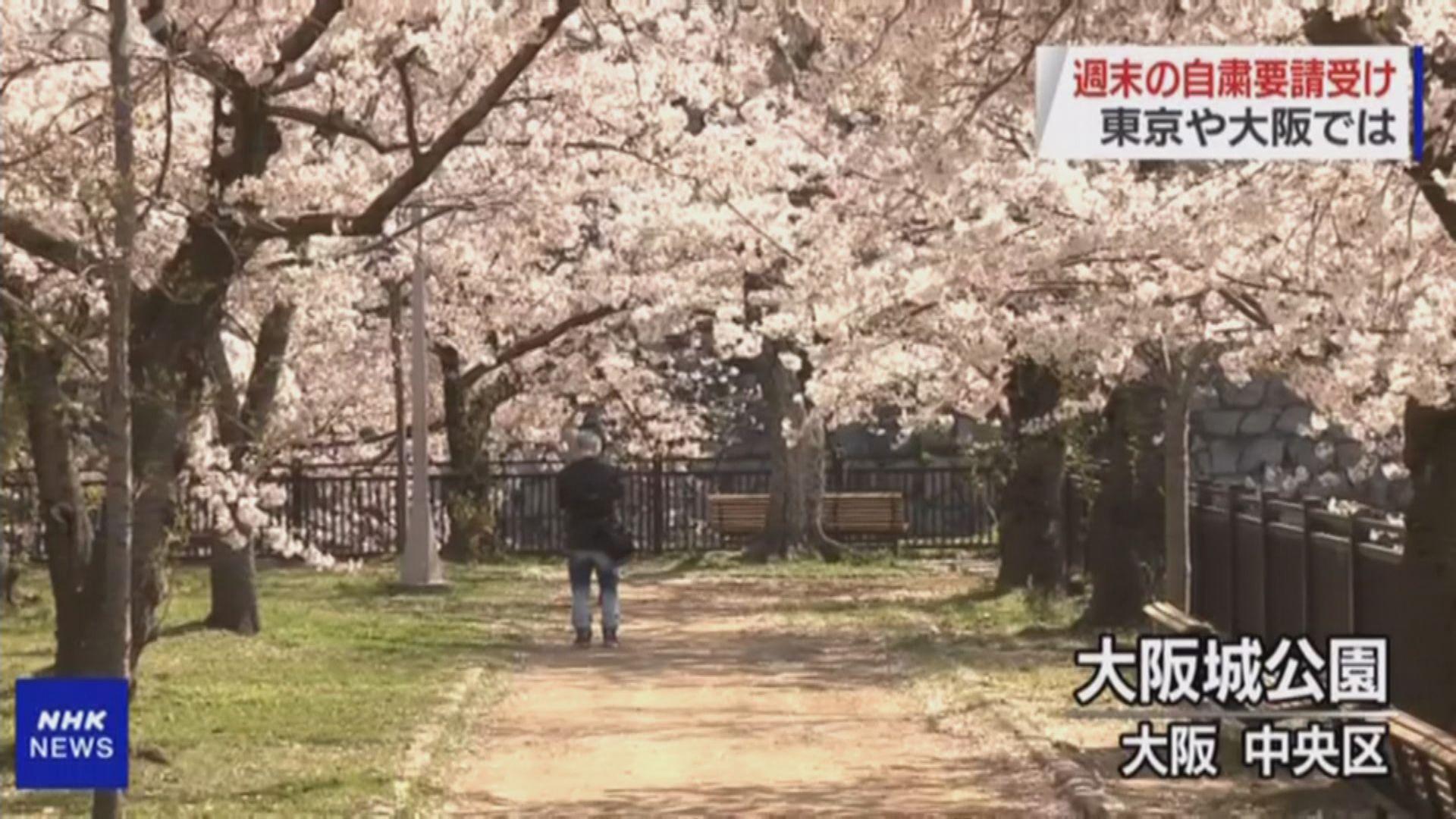 東京都新增確診再破百 疑與民眾賞櫻有關