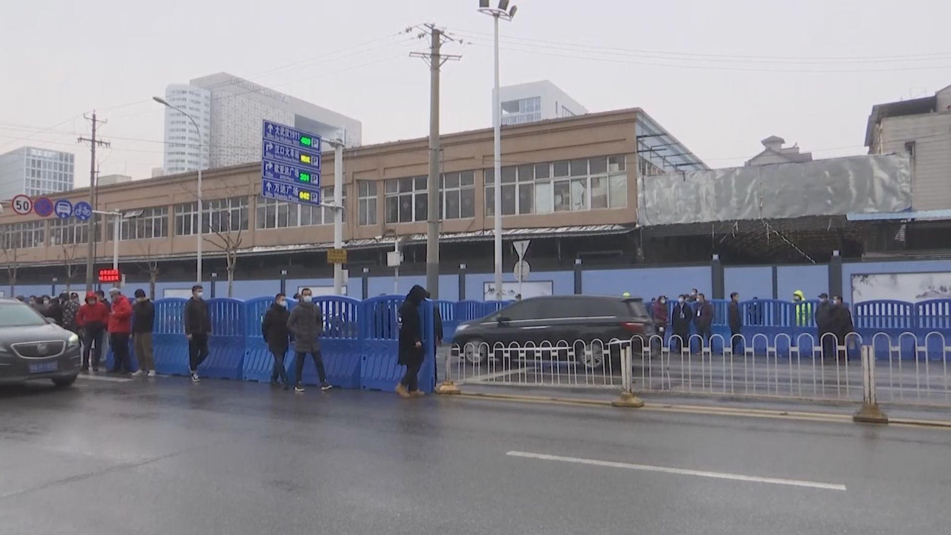研究指武漢市場所售野生動物多帶有可傳人類病原體