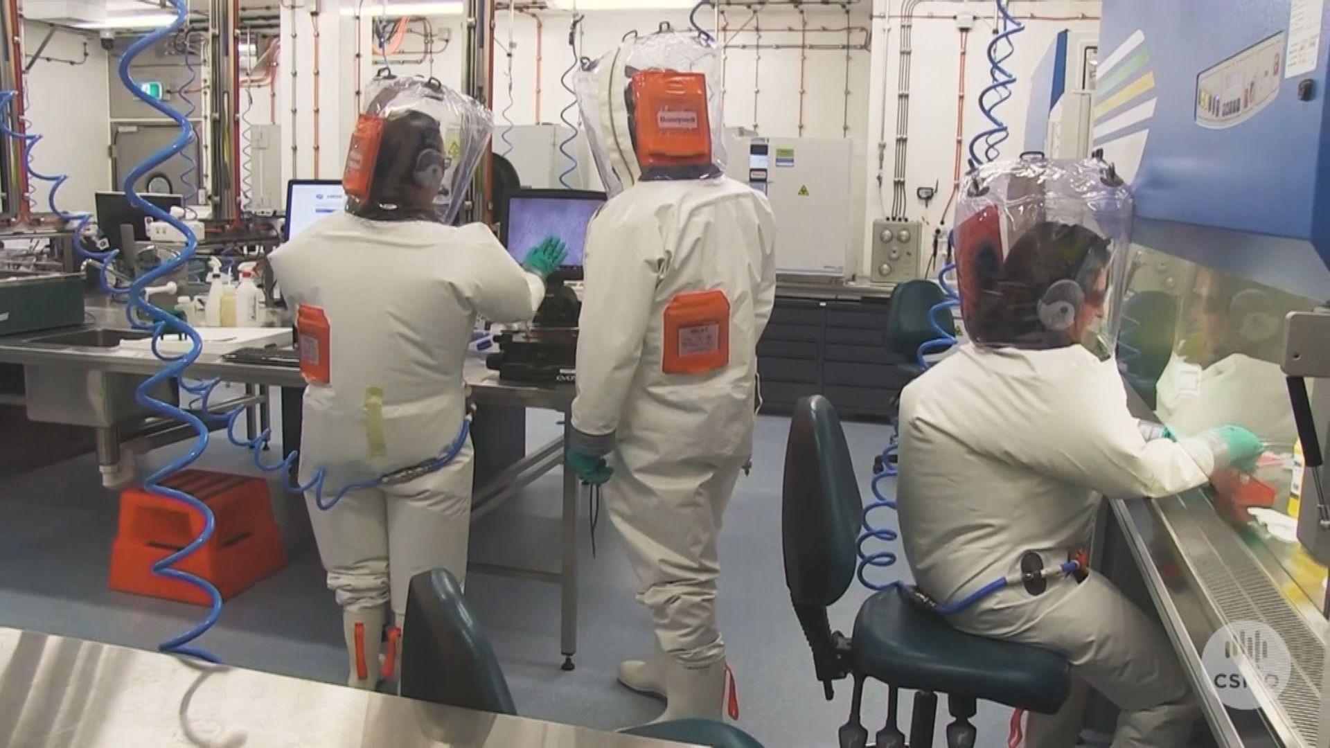 澳洲研究:新冠病毒可在平滑表面存活28天