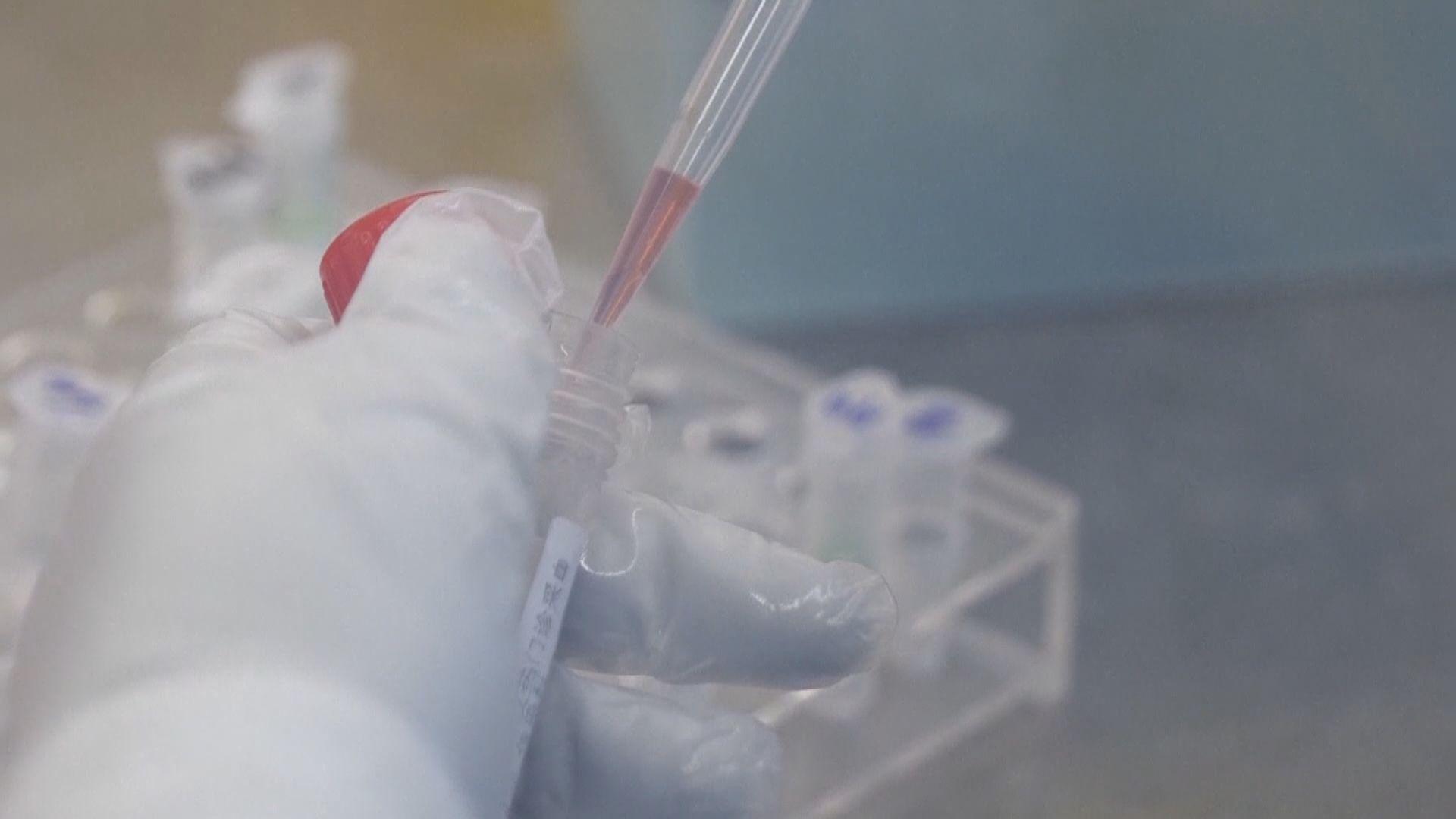 武漢經營醫院港商帶五萬試劑來港 稱獲批與本地化驗所合作做測試