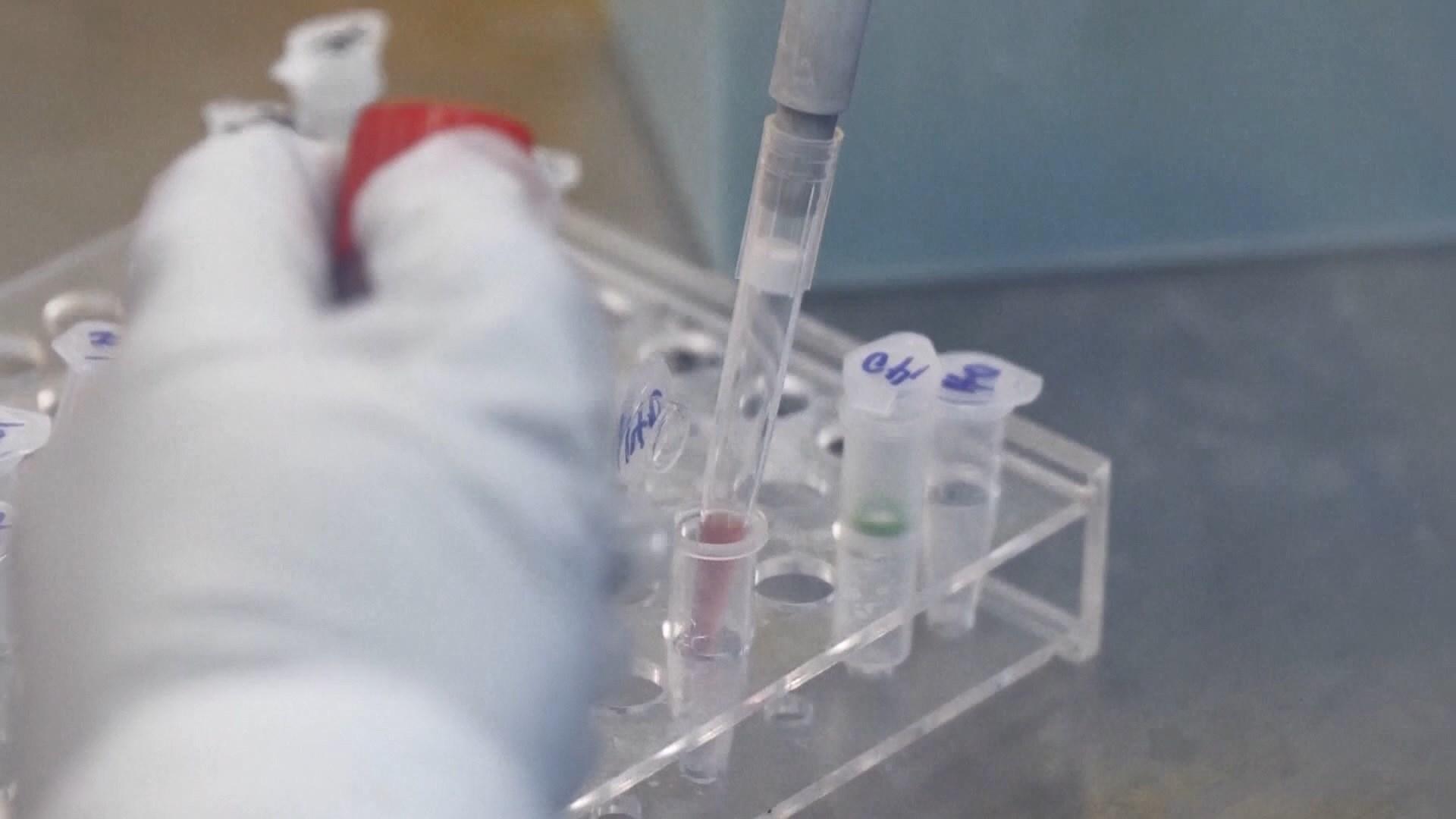新型冠狀病毒命名為COVID-19