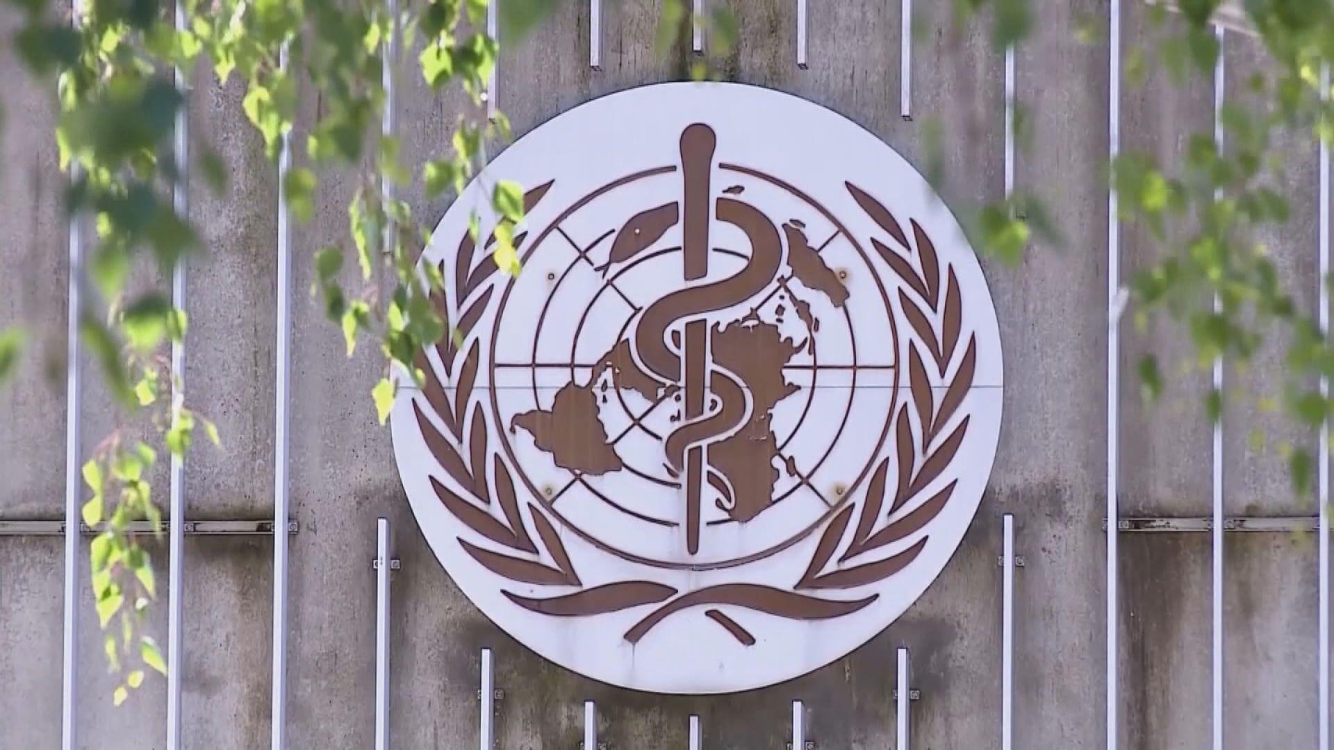 獨立專家小組報告指世衛判斷疫情能力嚴重受限