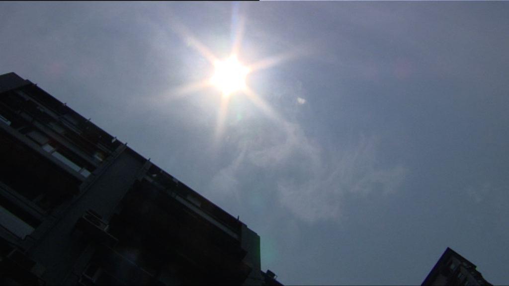 本港多區錄得37度高溫