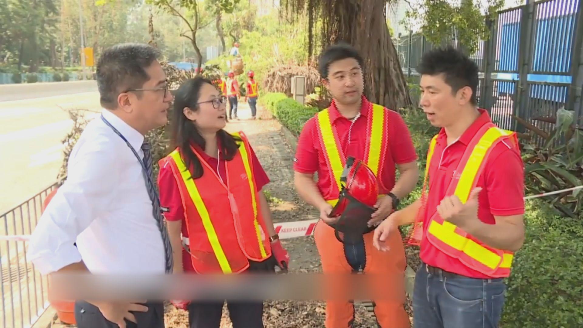 黃偉綸:會積極補種山竹吹塌的樹木