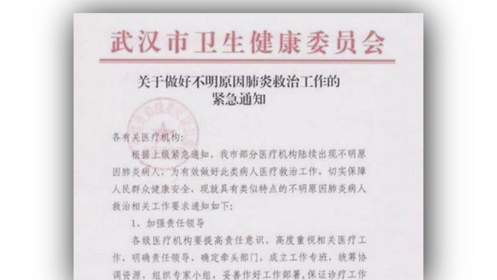 武漢市衛健委:未發現肺炎個案有明顯人傳人現象
